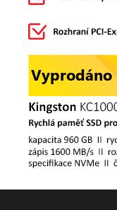 Kingston KC1000 960GB