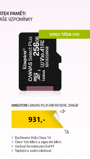 Kingston Canvas Plus microSDXC 256GB bez adaptéru
