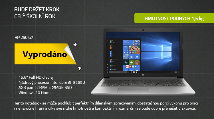 Notebook HP 250 G7 Stříbrná